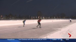 Emera Oval opens today